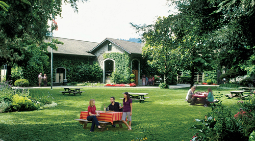 Dry Creek Vineyard Picnic Ground